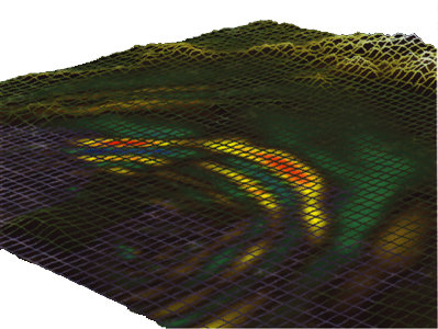 Simulated wave propagation in the Los Angeles area for the hypothetical constant-slip rupture on the Palos Verdes fault