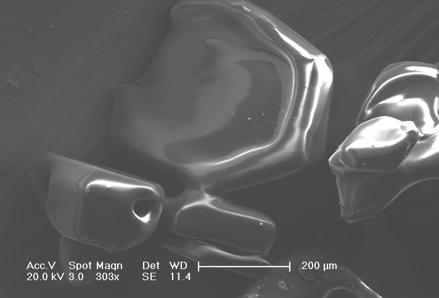 Scanning Electron Microscope image of snow grains